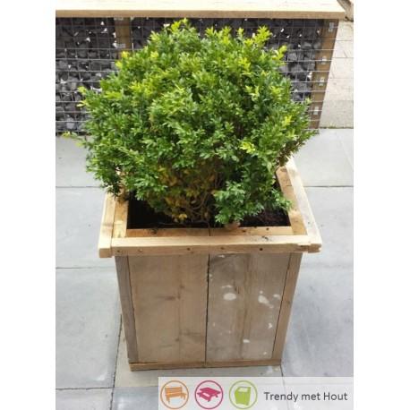 Steigerhouten-bloembak